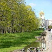 Екатерининский парк. Дворец. г.Пушкин. :: Мила Данковцева