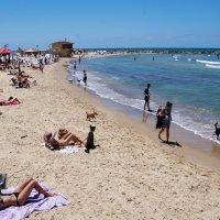 пляж :: evgeni vaizer