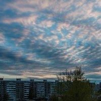 Вот такое небо сегодня в пять утра... :: Сергей Щелкунов