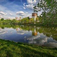 Новодевичий монастырь. Пруд :: mila