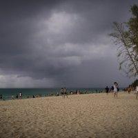 Скоро дождь :: Евгения Каравашкина