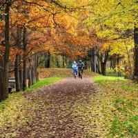Мы гуляли с тобой в старом парке .... помнишь? :: Николай Танаев