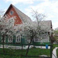 Домик в деревне. :: Надюша