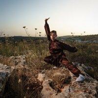 kung fu :: Gennady Karvitsky