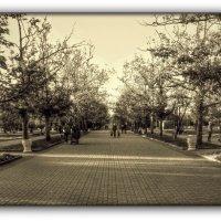 парк Победы :: Sergey Bagach
