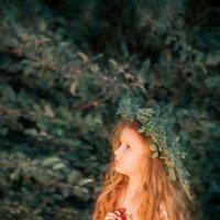 Ангел :: Евгения Малютина