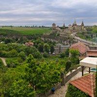 Типовой вид на старый замок :: Александр Крупский
