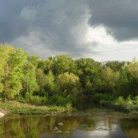 В ожидании дождя :: Роман В.