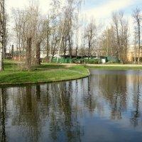 В парке им.Бабушкина. :: Валентина Жукова