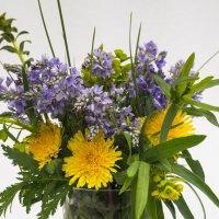 Придорожные цветы :: Алексей Масалов