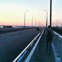 Мост через днепр :: elmomonster Ozhogin