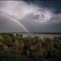 ах, эти майские дожди... :: Наталья Маркова