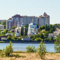 Воронежское водохранилище :: Андрей Воробьев