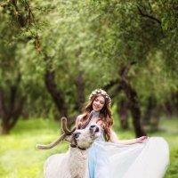Волшебная сказка в Коломенском с северным оленем:) :: Елена Юзифович