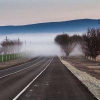"""""""Туман"""" :: KVEST К"""
