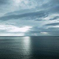 Отблески неба :: Swetlana V