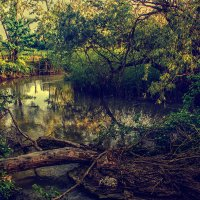 Река :: Виктор Фин