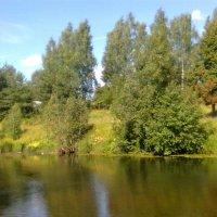 Река Оредеж :: Виктор Елисеев