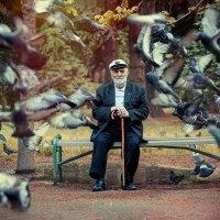Старик и голуби :: Ежъ Осипов