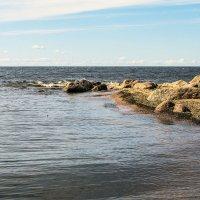 Камни на берегу :: Valerii Ivanov