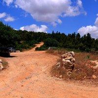въезд в лес запрещен :: evgeni vaizer