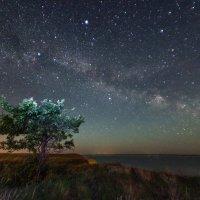 Звездная ночь на берегу Волги :: Сергей Попрошаев