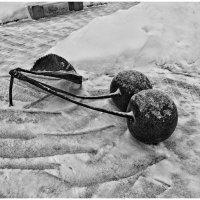 Зимняя вишня :: Natalia Mihailova
