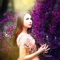 Лейла и волшебный лес :: михаил шестаков