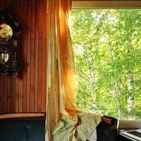Вид из окна. :: Владимир Гилясев