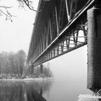 Исчезающий в тумане... :: Aleksandrs Rosnis