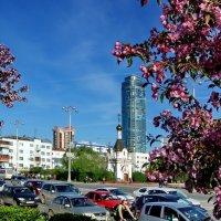 весна в моем городе :: BEk-AS 62