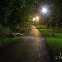 Парк :: Александр Бреза