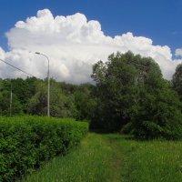 Найти 7 отличий от июня :: Андрей Лукьянов