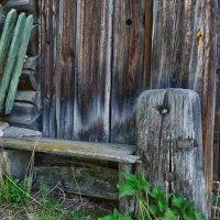 Остатки деревенского быта :: Светлана Игнатьева