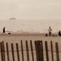 Руайян.Море. Пейзаж, повторяющийся веками. :: Елена Мартынова