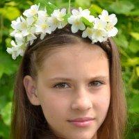 веночек с жасмина :: Юлия Москаленко