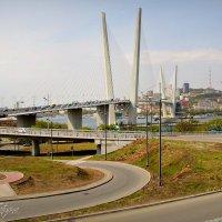 Золотой мост через бухту Золотой Рог. г.Владивосток :: Tatyana Belova