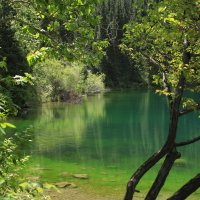 природа Казахстана :: Екатерина Шамелова