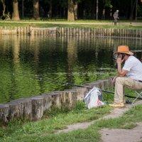 Алло, где рыба? :: Elena Ignatova