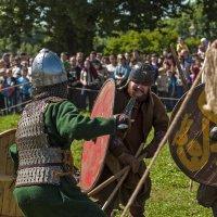 Фестиваль Легенды Норвежских Викингов 2015. :: Владимир Питерский