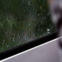 весь  день  дождь..... :: Валерия  Полещикова