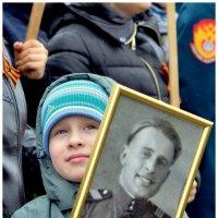 Как внуки на дедов похожи своих.. :: Лариса Красноперова