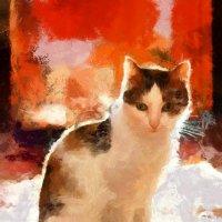 Яркая кошка :: Андрей Липов