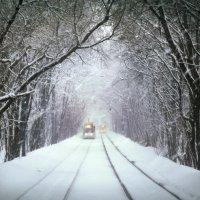 Снегопад :: Денис Масленников