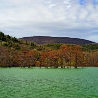 Озеро в Сукко :: Allex Anapa