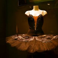 Для начинающей балерины :: Владимир Болдырев
