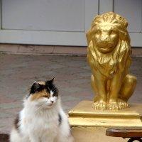 Два льва. :: Александр С