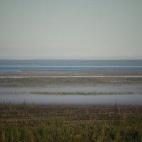 Утренний туман :: Дмитрий Тюрин