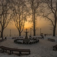 Утро в парке :: shvlad