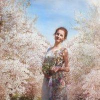 Прогулка в вишневом саду :: Наталья Бирюкова